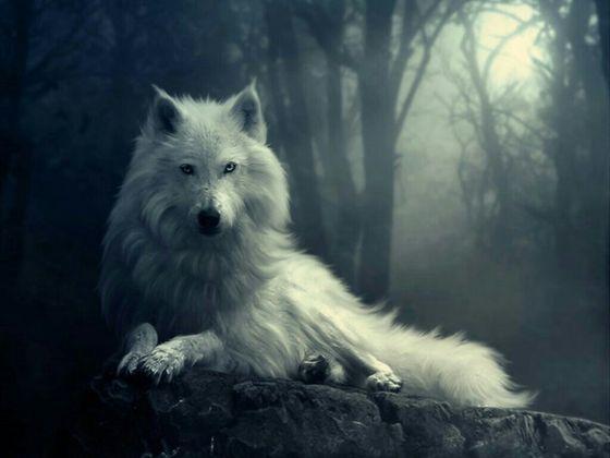 Granite As A Werewolf