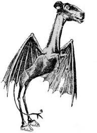 Artist's illustration of the Jersey Devil, based on eyewitness reports.