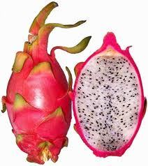 Here's what a dragon fruit looks like, if your curious :)
