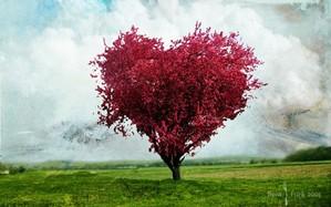 I love u sooo much!:*:*