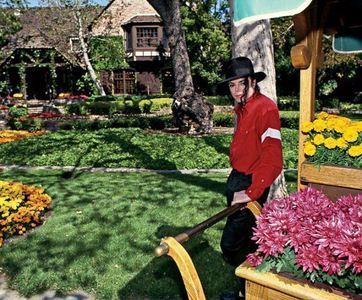 Maris Admiring Michael's Assortment Of flores