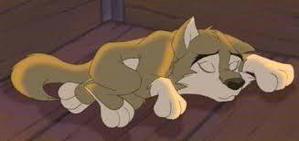 DeAma asleep ( yes thats originaly Aleu from Balto)