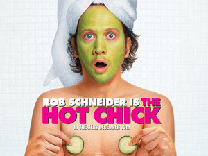 The Hot Chick cover