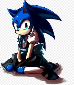 Sonic in his maid outfit.
