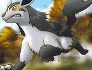 Number 5 Mightyena, evil dog alert well Mightyena is not a dog but that's how I look at him