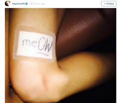 the playful pun she put on her plaster meOW