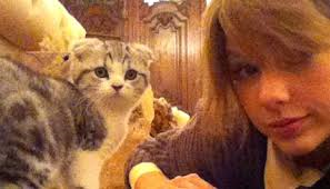 her and meredith her cat