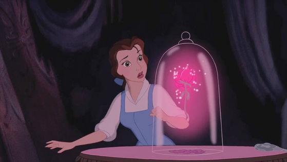 The scene of Belle found the encantada rose.