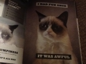 I had fun once it was awful says grumpy cat
