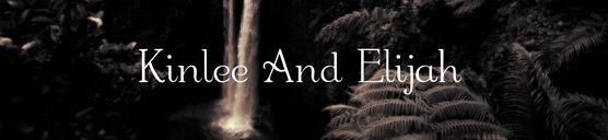 Lindsey Stirling (Third Album) New Tour, 2016 o 2017 Kinlee and Elijah fondo de pantalla