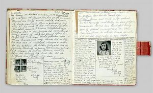 Her diary, how sad it is.
