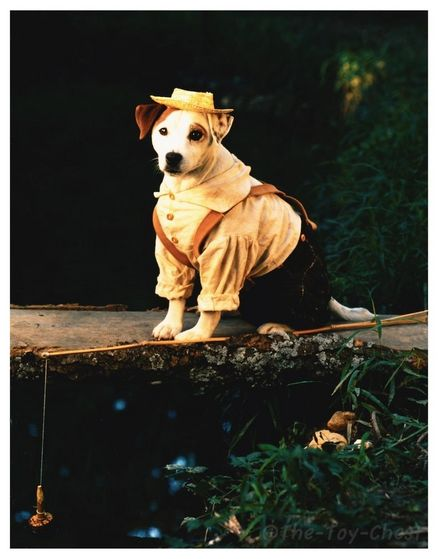 Wishbone as Tom Sawyer, a boy who finds meer adventures than he thought he would