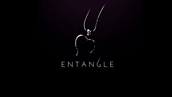 Entangle 2017, The Entwine Series