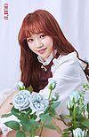 Kim Chaewon//IZ*ONE