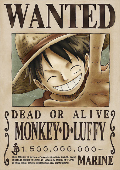 The straw hat pirates one piece fanpop - One piece wanted luffy ...