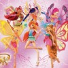 The Winx Club Fairies