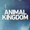 Animal Kingdom (TNT)