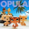 LPS Popular- The HighSchool Drama Series