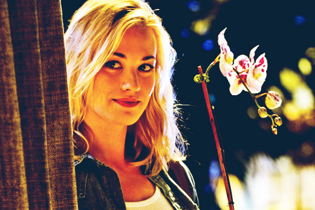 Day 17 — Which character would you say you are most like