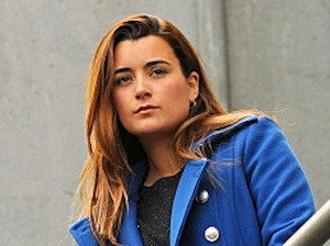 日 8 - お気に入り Cop または Detective または other similar characters Ziva David from NCIS, she was a Spec