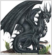 (this is my dragon)