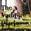 2.The Vampire Diaries(Show Title)