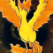 matthew:oh no toi don't *turn's into moltres like in the pick witch is ten-times biger then a car in