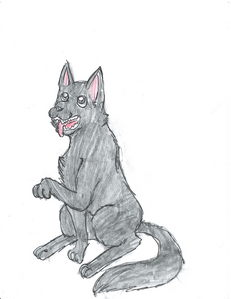 (her wolf form)
