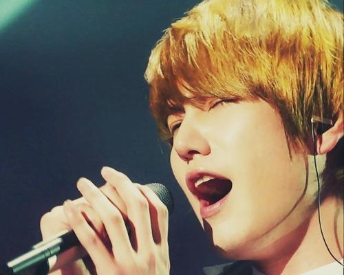 563d49129774 kyu s heaven voice~ http   ww3.sinaimg.cn large