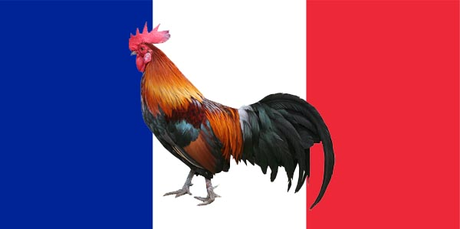 The Gallic Rooster...lol same pertanyaan