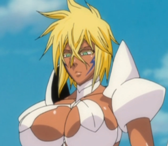 duh...............after nel there is only 1 espada girl that harribel.............if there were 更多
