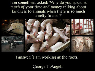 I agree. Meat is murder! If you love animals them you won't eat them. Plain and simple. Anyone can be