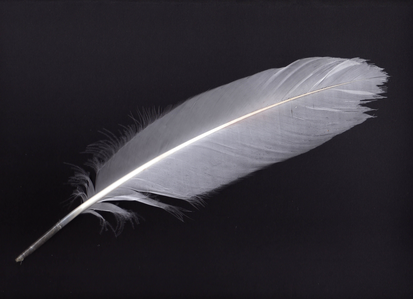 lol mines a feather my trouble are light:D