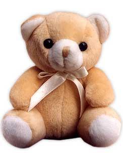 My KnB self gets a teddy!! X3
