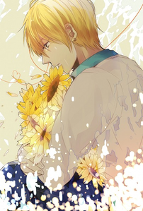 I think sunflowers suite Kise's personality perfectly~