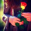 Flower(s) - [b]Vampire_Lover97[/b]