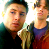Sam and Dean's 'bitch sinabi what?' face