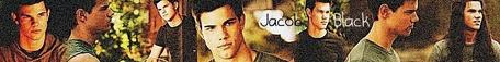 #3 Jacob Black- Taylor Lautner