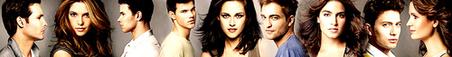 #5 Twilight cast....