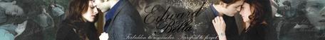 #6 Edward & Bella