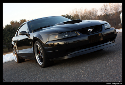Roseluck would drive a 2001 Ford mustang Bullitt. What would Colgate have?