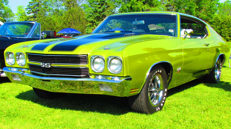 Aloe would drive a 1970 Chevrolet Chevelle SS 454. What would gänseblümchen, daisy drive?