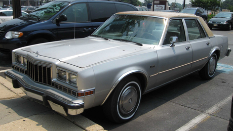 Roseluck drives a 1982 Dodge Diplomat. What does Carrot 상단, 맨 위로 have? I got a great idea. Let's make t
