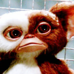 105. Gremlins. It's always on TV around Christmas, and I always watch it.