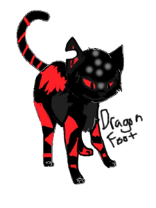 This is what Dragonfoot my OC looks like