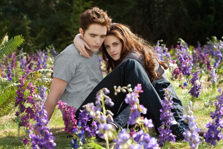 Last scene of BD 2 - so beautiful and so sad because it's the end of the Twilight Saga
