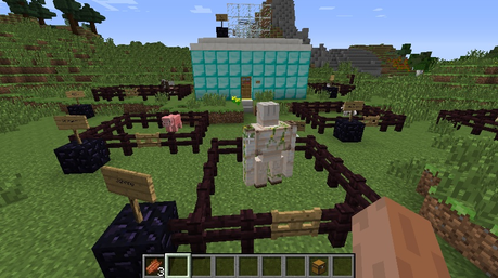 (Here we have the front view of the house XP Walls are made of pure diamond XP In one pen, we have my