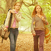 [url=http://www.fanpop.com/clubs/hermione-granger/picks/results/1428724/5-5-icon-contest-round-5-them