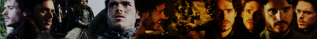 Banner #4 (different order of pictures)
