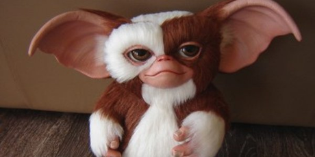 This is to Mr. Widemouth: Has anyone ever told you you look like a Gremlin